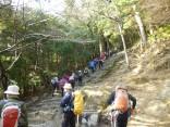 2015-2-15速玉・神倉神社~高野峠 093