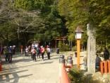 2015-2-15速玉・神倉神社~高野峠 081