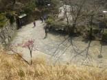 2015-2-15速玉・神倉神社~高野峠 204