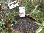 2015-2-15速玉・神倉神社~高野峠 156