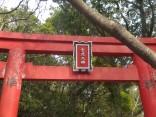 2015-2-15速玉・神倉神社~高野峠 283