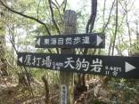山2015-4-18鳳来寺 301