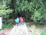那智の滝2015-4-4.5 293