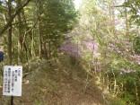 山2015-4-18鳳来寺 187