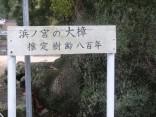 那智の滝2015-4-4.5 237