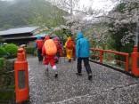 那智の滝2015-4-4.5 290