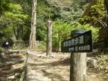 山2015-4-18鳳来寺 135