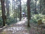山2015-4-18鳳来寺 355