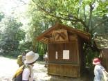 2015-5-10尾張富士・本宮山 053