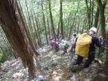 2015-5-17竜ヶ岳 266