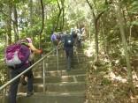 2015-5-10尾張富士・本宮山 119