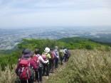 2015-5-17竜ヶ岳 237