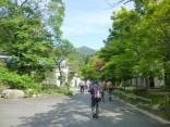 2015-5-17竜ヶ岳 007