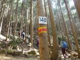 2015-5-17竜ヶ岳 029