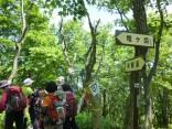 2015-5-17竜ヶ岳 073