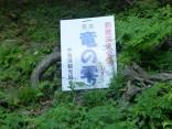 2015-5-17竜ヶ岳 018