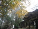 2015-11-19本宮山 036