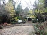 2015-11-19本宮山 103