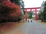 2015-11-19本宮山 022