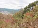 自然歩道2015-11-11豊橋 023