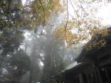 2015-11-19本宮山 037