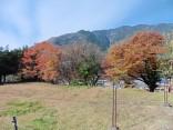 2015-11-29南木曽・中仙道 009