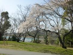 3-23豊橋公園 009
