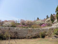 本宮山4-16 132