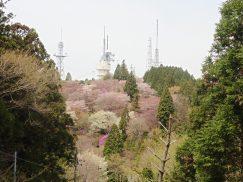 本宮山4-16 050