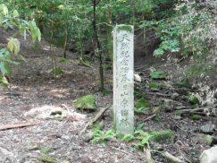 2016-5-15奈良・春日山 162