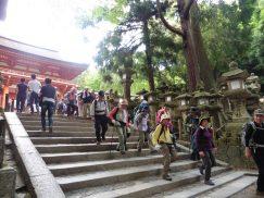 2016-5-15奈良・春日山 248