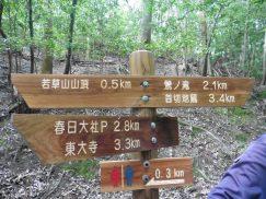 2016-5-15奈良・春日山 188