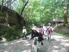 2016-5-15奈良・春日山 196