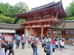 2016-5-15奈良・春日山 240