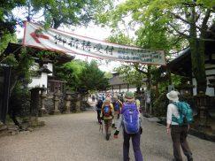 2016-5-15奈良・春日山 233