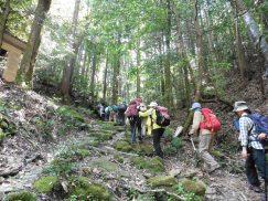 2016-5-15奈良・春日山 148