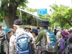 2016-5-15奈良・春日山 001