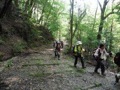 2016-5-15奈良・春日山 154