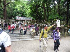 2016-5-15奈良・春日山 249