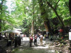 2016-5-15奈良・春日山 073