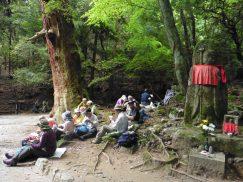 2016-5-15奈良・春日山 072