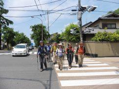 2016-5-15奈良・春日山 004