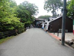 2016-5-15奈良・春日山 215