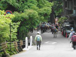 2016-5-15奈良・春日山 214