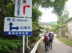 2016-5-15奈良・春日山 017