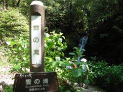 2016-5-15奈良・春日山 138