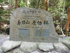 2016-5-15奈良・春日山 122