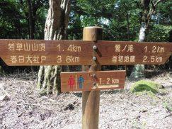 2016-5-15奈良・春日山 173