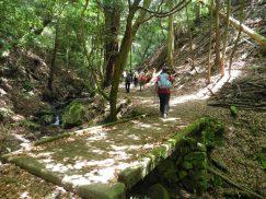 2016-5-15奈良・春日山 058