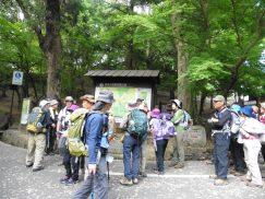 2016-5-15奈良・春日山 225